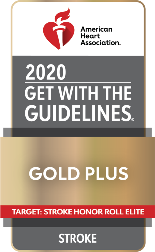 2020 Get. with the Guides - Gold Plus - Stroke